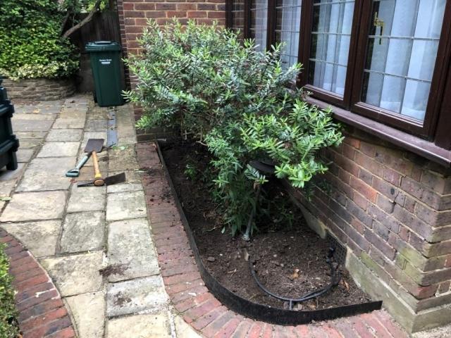 Garden Planting Golders Green NW11