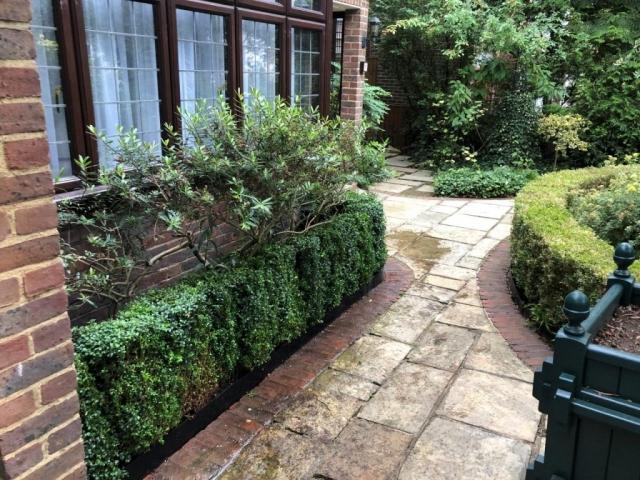 Garden Planting North West Lndon
