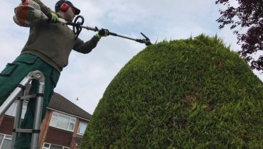 Garden maintenance in North London