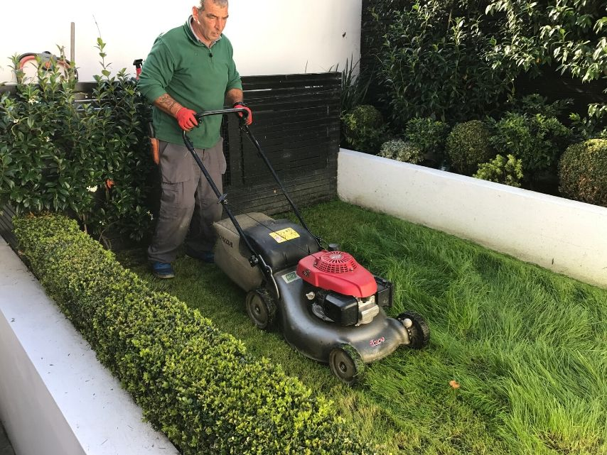Gardening services North London